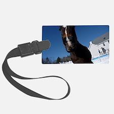 Evaire Headshot 3 Luggage Tag