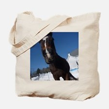 Evaire Headshot 3 Tote Bag