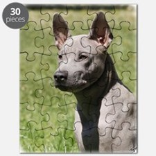 Thai Ridgeback 9Y815D-302 Puzzle