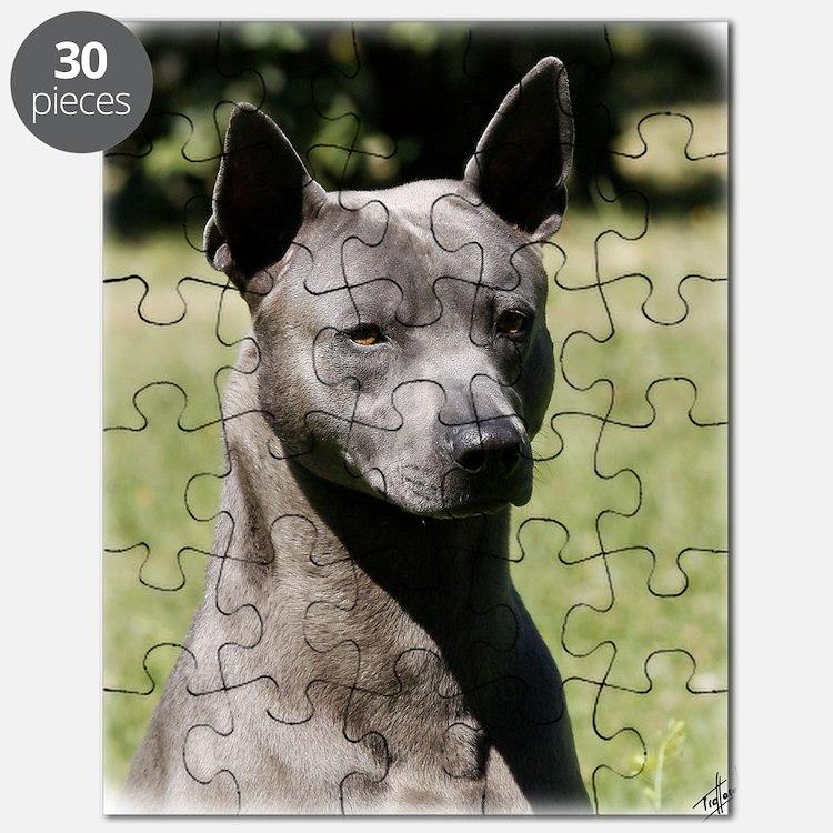 Thai Ridgeback 9Y815D-273 Puzzle
