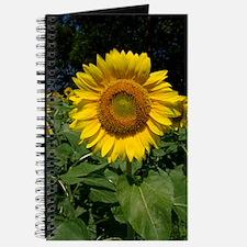 100_7759 Journal