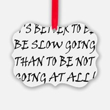 10x8slow_going_text2 Ornament