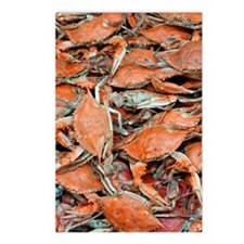 snow crabs (1) Postcards (Package of 8)