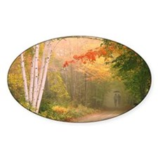 Cilley Hill Road Decal