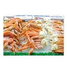 Snow Crabs  2f Postcards (Package of 8)