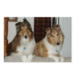 Rescued collie buds Postcards (Package of 8)