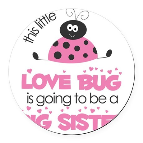 MASTER BUGS - ladybug and bees pi Round Car Magnet