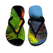 B3BC9023 Flip Flops