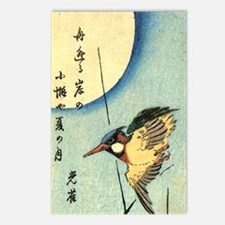 Kingfisher.p3 Postcards (Package of 8)