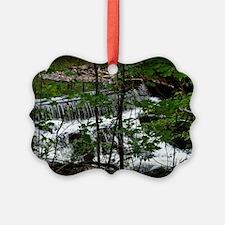 Bronx River Ornament