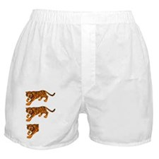 Two and a Half Tigers Boxer Shorts