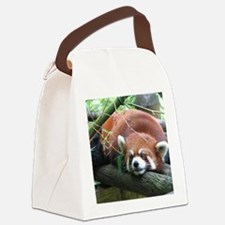 IMG_4481 Canvas Lunch Bag