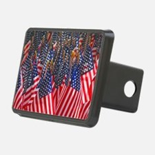 American Flags License Pla Hitch Cover