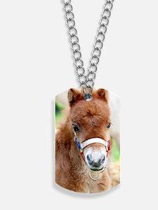 Orphaned Foal - Joy Dog Tags