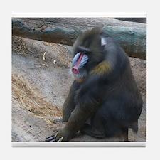 you big ape Tile Coaster