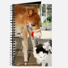 Orphaned Foal - Joy Journal