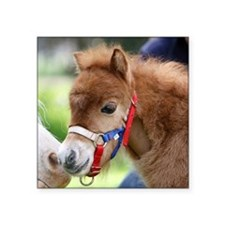 "Orphaned Foal - Joy Square Sticker 3"" x 3"""
