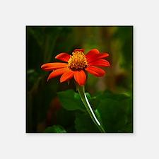 """Orange flower2 Square Sticker 3"""" x 3"""""""