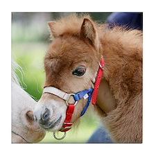 Orphaned Foal - Joy Tile Coaster