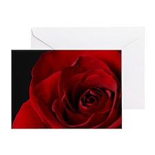 2011vDayRose_7_16x20 Greeting Card