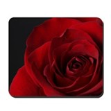 Art roses Mouse Pads