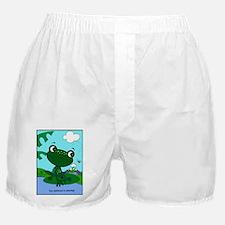Image954 Boxer Shorts