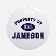 Property of jameson Ornament (Round)