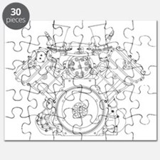 ts-dfv3 Puzzle