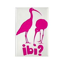 ibi Rectangle Magnet