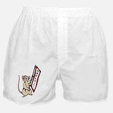 ganbatte Boxer Shorts