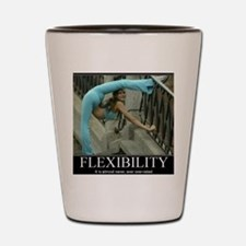 DeMotivational - Flexibility Shot Glass