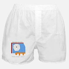 Adolescent boy flies Boxer Shorts