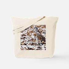 IMG_2101cal Tote Bag