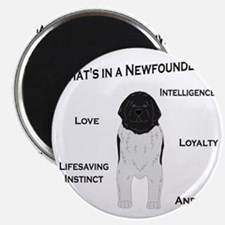 Whats in a Newf - Landseer Magnet