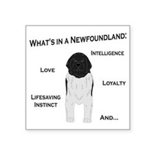 "Whats in a Newf - Landseer Square Sticker 3"" x 3"""