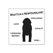 "Whats in a Newf - Black Square Sticker 3"" x 3"""