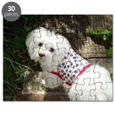 4th July Boy Puzzle