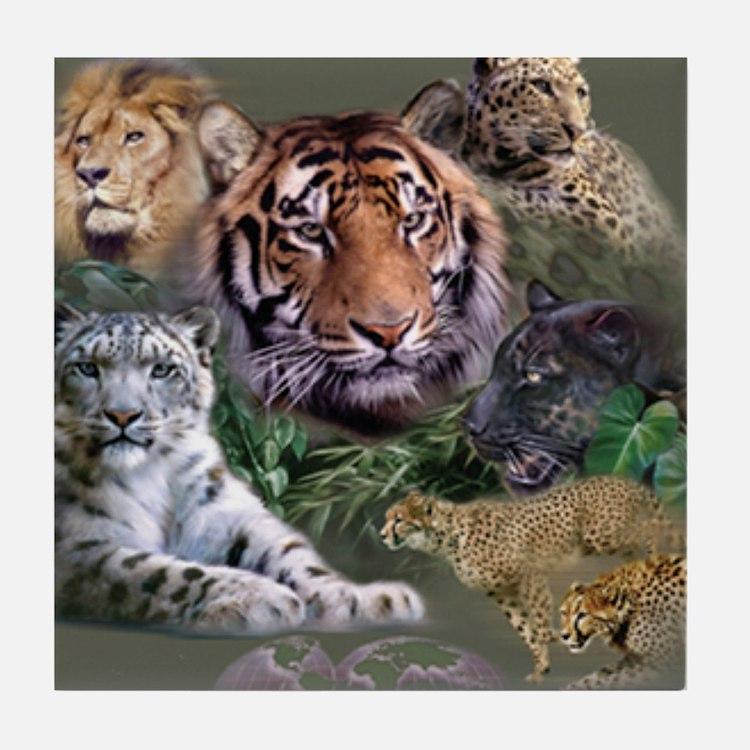 ip001528catsbig cats3333 Tile Coaster