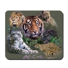 ip001528catsbig cats3333 Mousepad