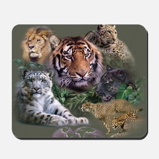 ip001528catsbig cats3333 Mousepad