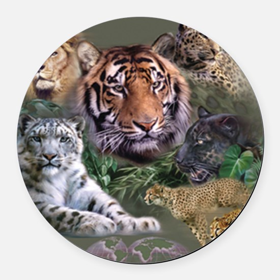 ip001528catsbig cats3333 Round Car Magnet