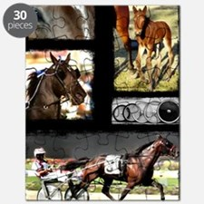 Harness Racing Sports Puzzle