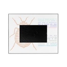 drawing_black Picture Frame