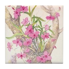 Cooktown_Orchid_78_iPad_Case Tile Coaster
