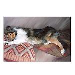 Sleepy Collie Postcards (Package of 8)