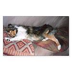 Sleepy Collie Rectangle Sticker