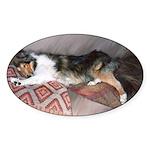 Sleepy Collie Oval Sticker