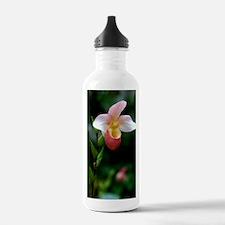 DSC_0380edit Water Bottle