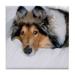 Relaxed Collie Tile Coaster
