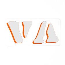 VA Aluminum License Plate